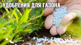 видео Газонное удобрение