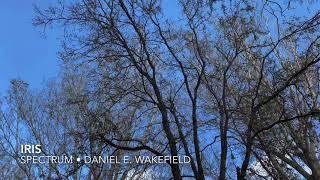 Daniel E. Wakefield - Iris