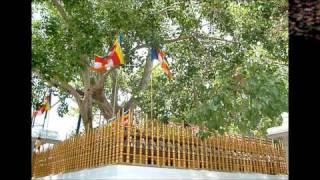 Sinhala song -Vali thala athare.wmv  by WD Amaradewa !!! Thumbnail