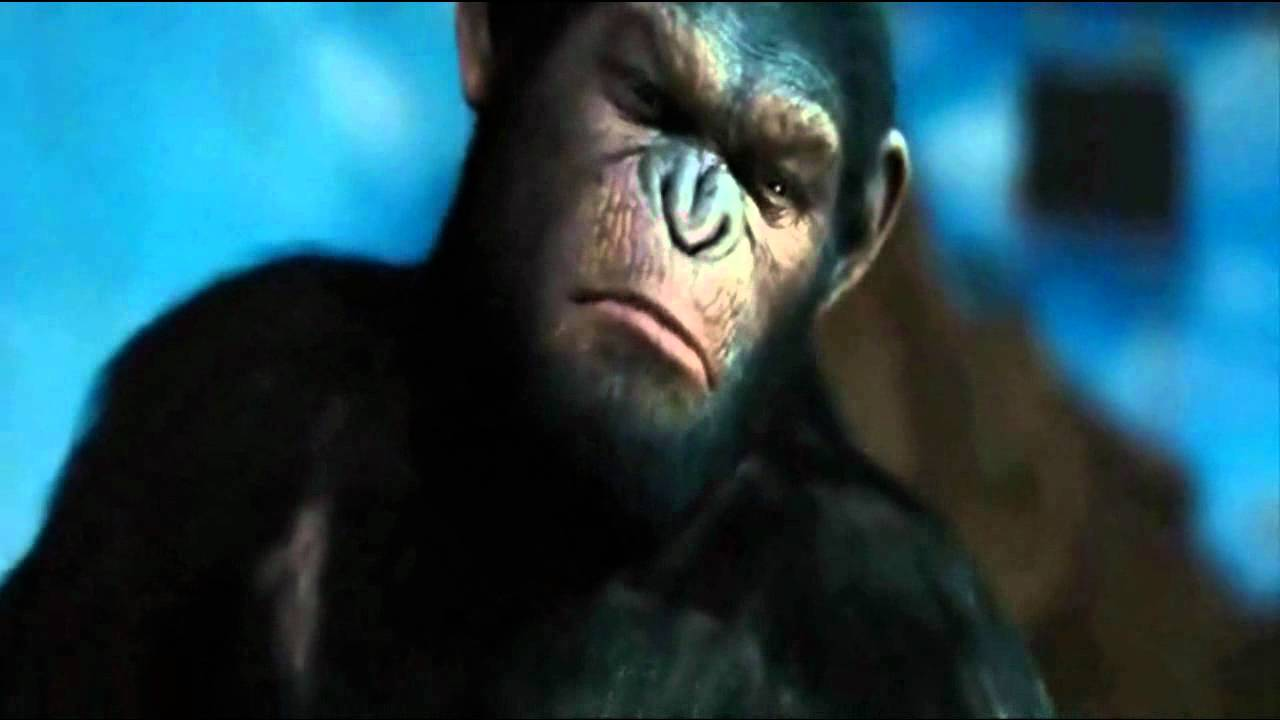 Rise of the planet of the apes - No ! - YouTube