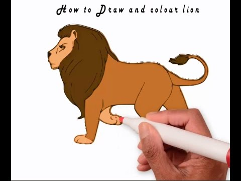 How To Draw And Colour Lion 2016 Learn To Draw Lion Youtube
