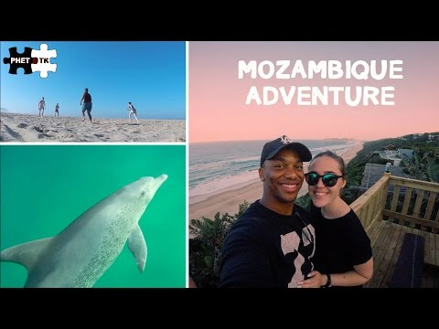 MOZAMBIQUE ADVENTURE | SWIMMING WITH WILD DOLPHINS