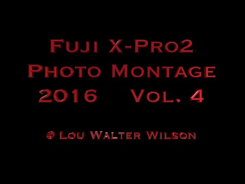 Fujifilm X-Pro2 Vol 4 Photo Montage - Lou Walter Wilson