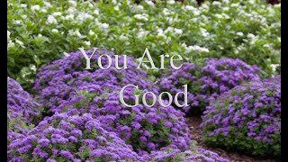 You Are Good Instrumental