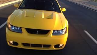 2004 Screaming Yellow SVT Cobra