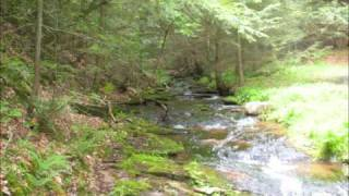PINE CREEK PA JUST AROUND THE RIVER Bann.wmv