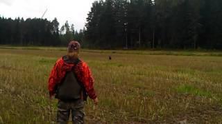 Retriever Training: Blind Exercise