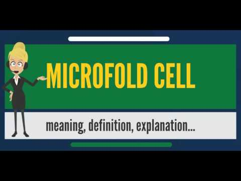 What is MICROFOLD CELL? What does MICROFOLD CELL mean? MICROFOLD CELL meaning & explanation
