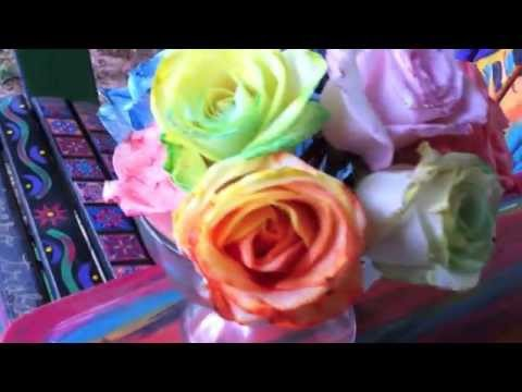 HOW TO: Tie Dye Roses - DIY Rainbow Roses And Flowers