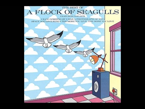 The Best of A Flock of Seagulls (Full Album)