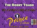 "watch he video of The Horny Toads: ""Why You Want To Treat Me So Bad?"" Prince Tribute New Way Bar 7.30.16"