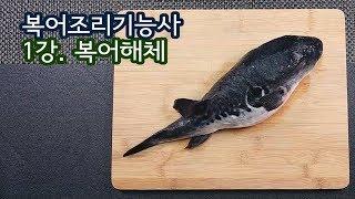 """2019 복어조리기능사 실기영상 """" 복어 해체…"""