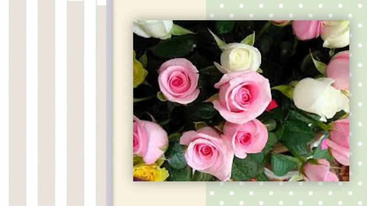 поздравительные фото открытки