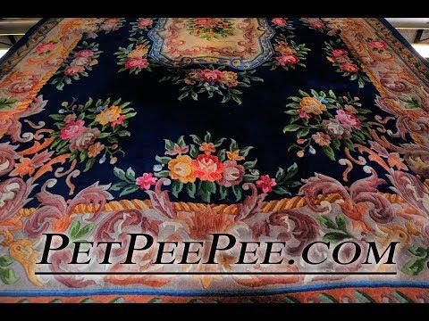 keeping it real Oriental rug cleaning