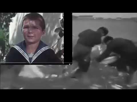 """""""Не надейся, рыбак на погоду"""" - пели украинские актёры в 1955г."""