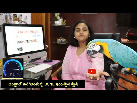 BSNL Internet Speed in Andhra Pradesh and My Telugu Talking Macaw Max | Internet in India #Broadband