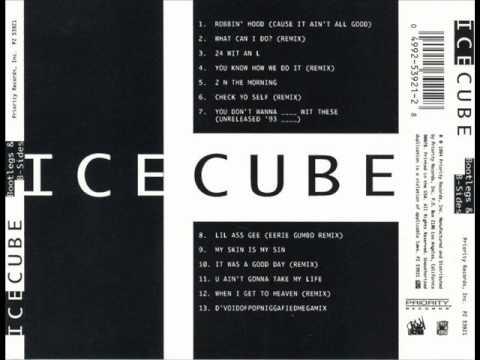 Ice Cube - 1994 - Bootlegs & B-Slides - My Skin Is My Skin