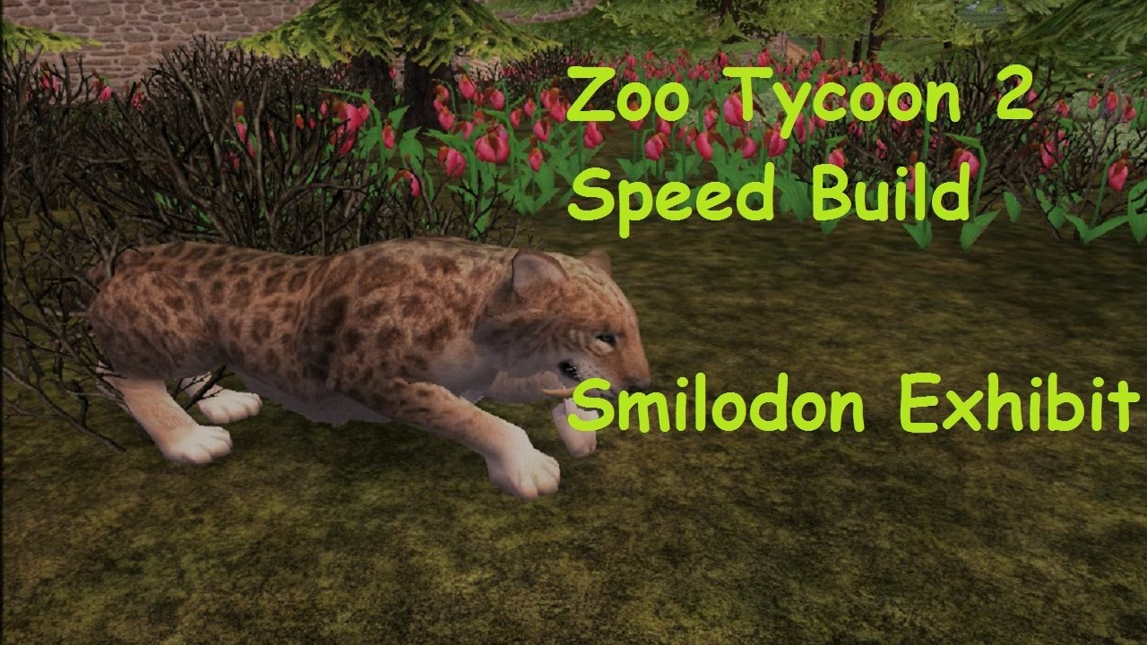 Build Zoo Tycoon