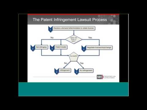 NHLBI Small Biz Hangout: Patent Litigation (Part 1)