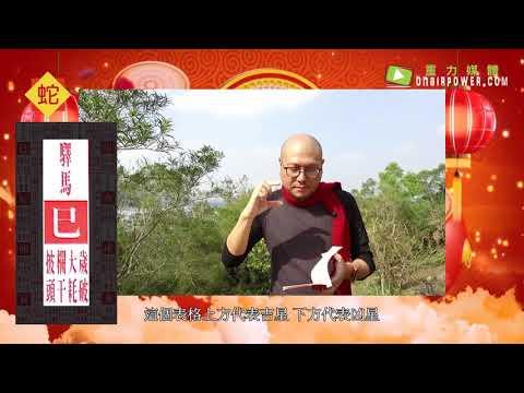 2019豬年十二生肖之【肖蛇】運程