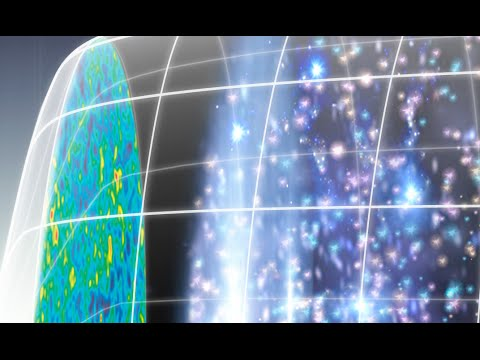 The Polarized CMB: From Neutrinos to Gravitational Waves