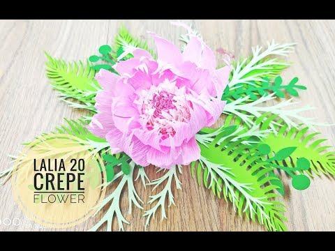 Lalia 20 crepe DIY Crepe Paper flower backdrop