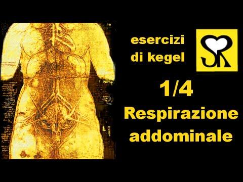 kegel e perineo 1/4: la respirazione addominale