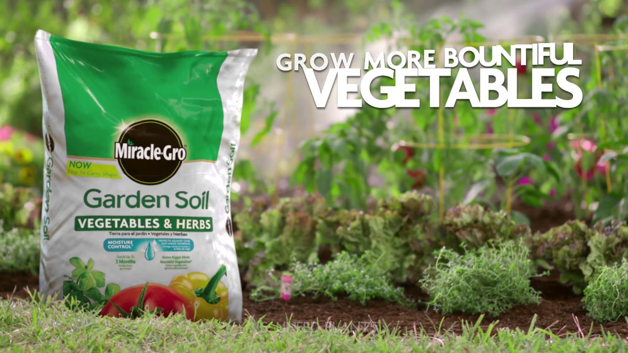 how to use miracle gro for vegetables herbs for in ground gardening - Miracle Gro Garden Soil