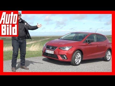Seat Ibiza 1.0 TGI (2018) Details / Erklärung / Review