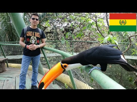 Some Birds and Animals at the ZOO in Santa Cruz, BOLIVIA South America