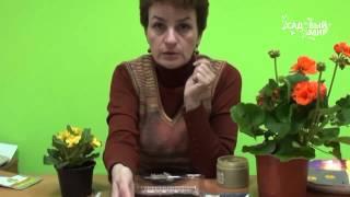 Как вырастить лобелию ЧАСТЬ 1. Посев семян с песком.
