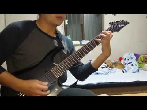 The Faceless - Accelerated Evolution (guitar cover)