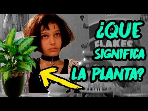 Curiosidades y el OSCURO contexto de la película; Leon el Profesional 1994 Filme de CULTO