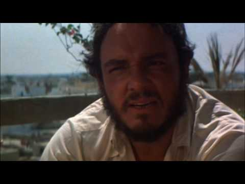 Raiders of the Lost Ark 1981    Steven Spielberg