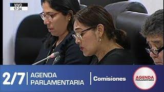 Sesión Comisión de Ética Parlamentaria 2/7 (03/06/19)