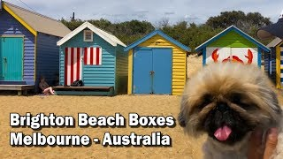 Brighton Beach Boxes - Melbourne Tourist Attraction 4K 60fps