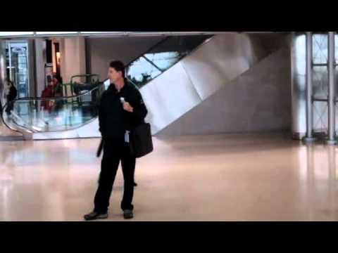 Sphinx Random Acts of Culture - Detroit Metro Airport