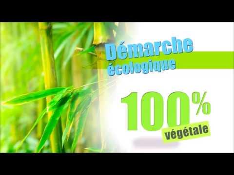 Pastille Bio Performante pour Economie d'Essence tout Réservoir