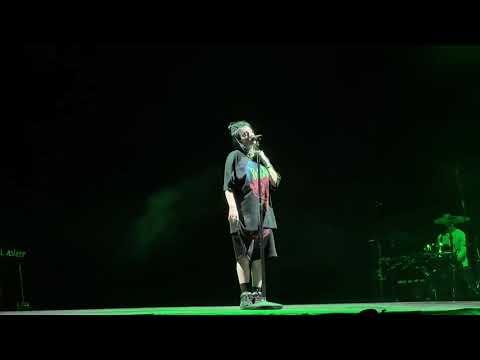 Billie Eilish Coachella - Wish You Were Gay