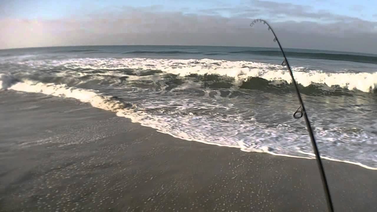 Surf fishing in oceanside and carlsbad on 2 18 12 youtube for Oceanside fish report