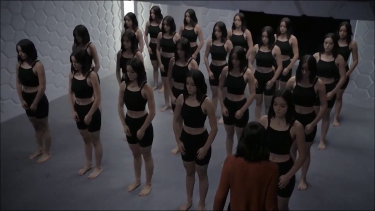 Download Agents of Shield: Room Full Of Daisies