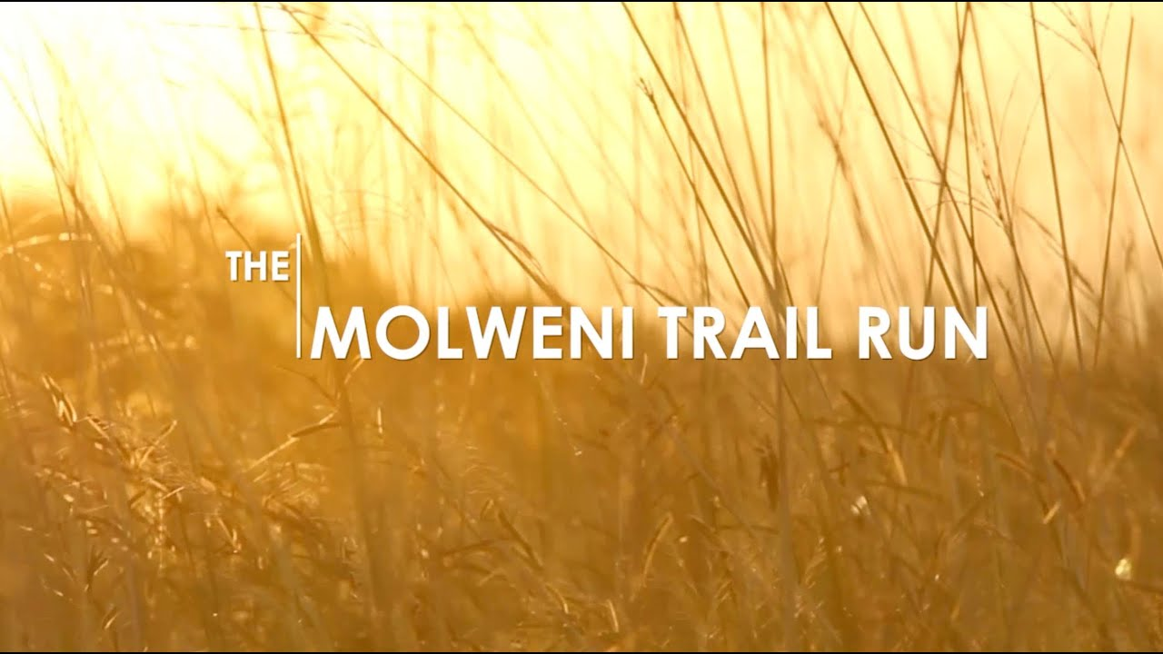 Molweni Trail run 2015_Full Movie
