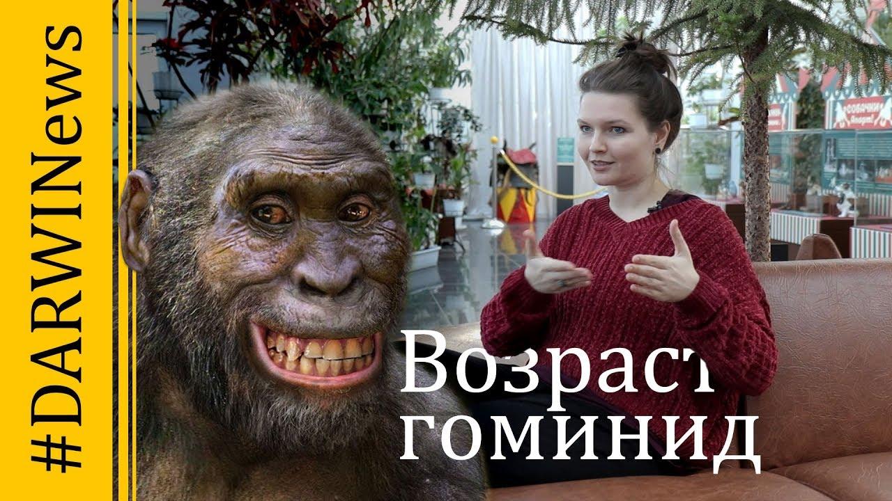 Кто быстрее мутирует, обезьяна или человек? Елена Сударикова #DARWINews