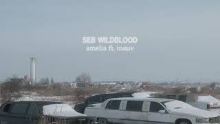Cover images seb wildblood - amelia ft. mauv
