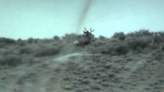 Deer hunter misses 5 times with BUCK FEVER!