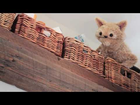 This Cat is NED  EP 17   HIDE and SEEK