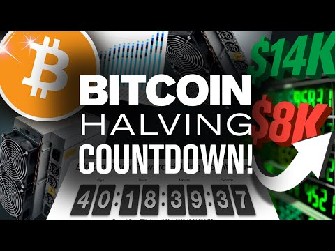 BITCOIN Halving 2020 Prediction! Will BTC Pump!?