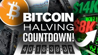 BITCOIN Halving 2020 Prediction! Will BTC Pump!?