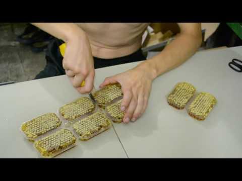 Разборка пластиковых рамок и упаковка сотового меда