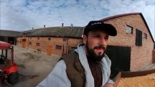 Rolnik Pracuje #4 - Transport Kukurydzy do Gorzelni w Mstowie / Zetor 7211  (Film 360 Stopni)